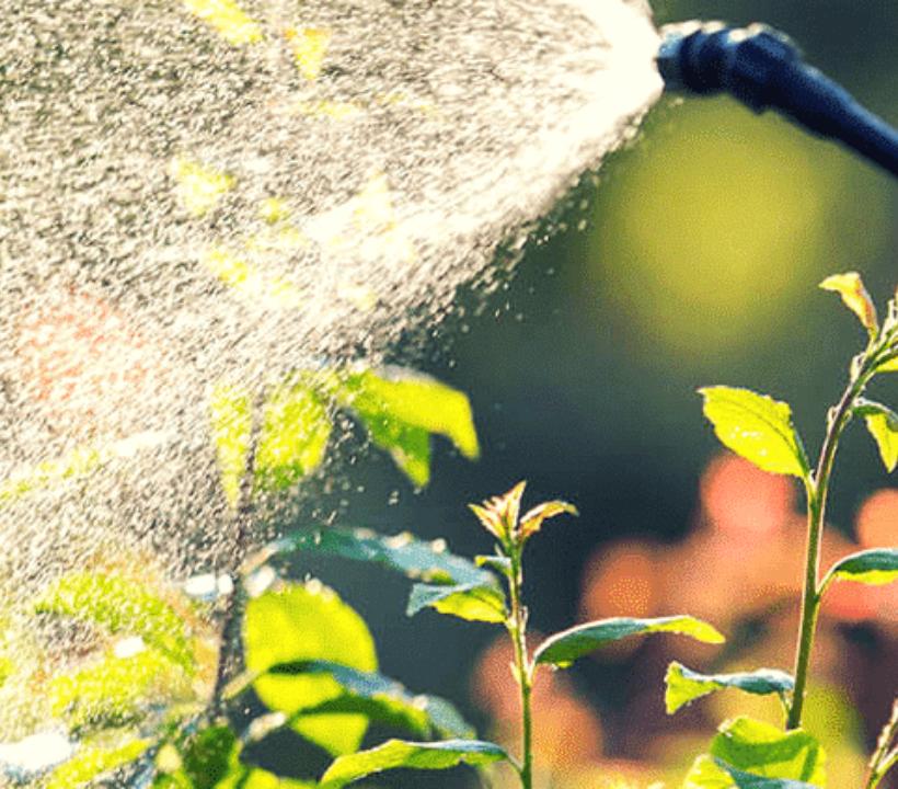 Agrofarmaci in Italia: un calo lungo trent'anni