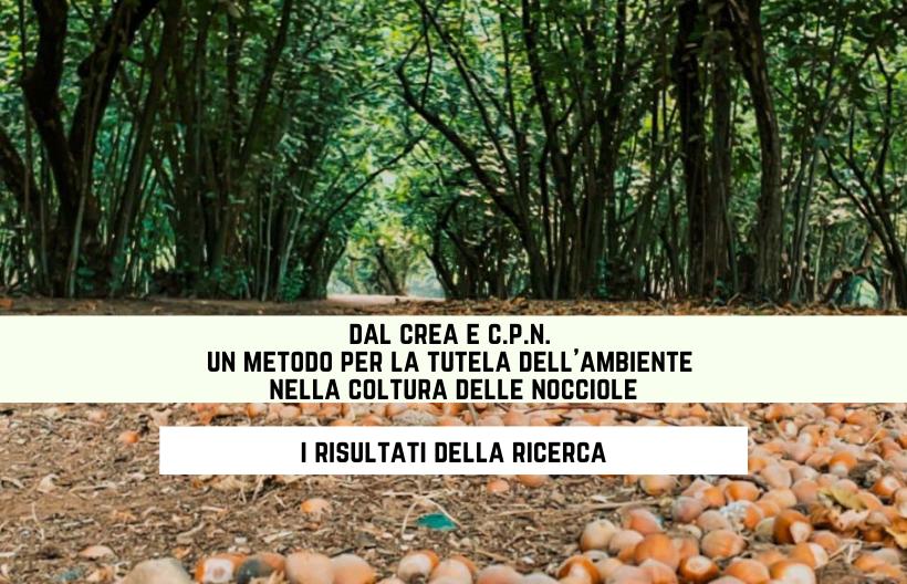 Dal CREA e C.P.N. un metodo per la tutela dell'ambiente nella coltura delle nocciole: i risultati della sperimentazione
